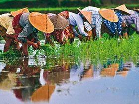 越南新娘愛心不落人後 合力送愛到台東偏鄉部落
